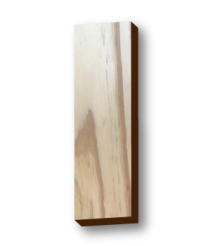maderas-lamision-especie-pinoamarillo3